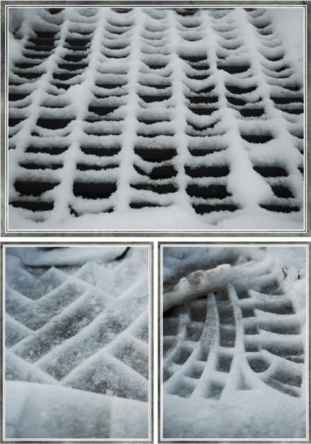 In Sight: Patterns in the Snow